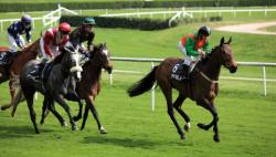 courses hippiques pmu pronostic chevaux